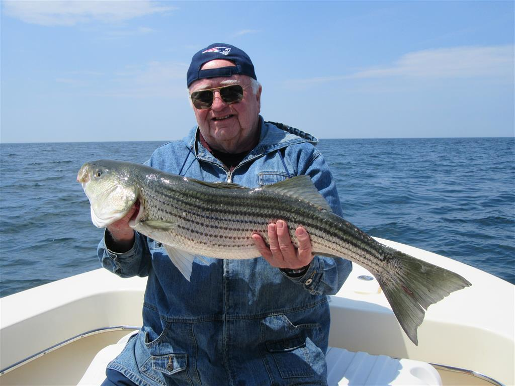 Fishing reports relentless charters green harbor and for Mass fishing report