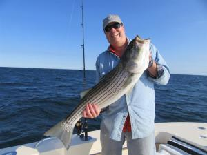 Scott Gilbert is all smiles displaying a nice striped bass he landed with Captain Dave Waldrip of Relentless Charters