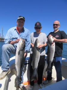 From left to right, Scott Gilbert, Marty and his dad Paul Wisniewski with their legal limit of striped bass landed on board RELENTLESS out of Marshfield, MA fishing off of Race Point on July 2nd, 2016